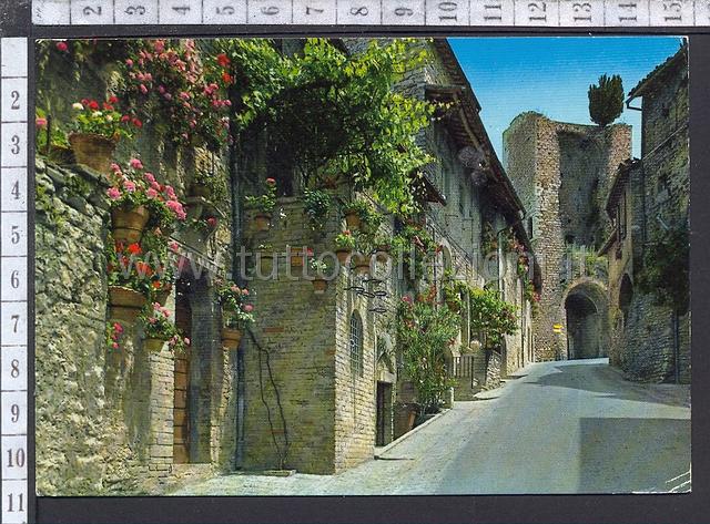 Assisi cartoline postali collezionismo di cartofilia - Porta san giacomo assisi ...
